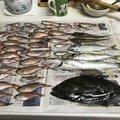 マロンさんの宮崎県都城市での釣果写真