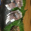 ryuさんの神奈川県逗子市での釣果写真