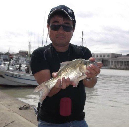 ガキおやじさんの投稿画像,写っている魚はヘラブナ