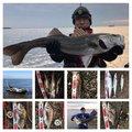 赤眼のあきと(REV)さんの千葉県松戸市での釣果写真