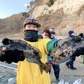 tatsukiさんの岩手県下閉伊郡での釣果写真