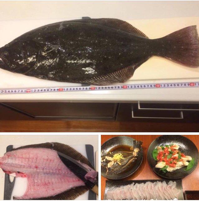 辻堂さんの投稿画像,写っている魚はヒラメ