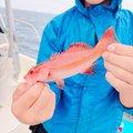 比嘉 りゅうきさんの沖縄県豊見城市での釣果写真