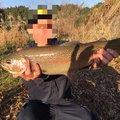 NEZUREさんの鹿児島県肝属郡での釣果写真
