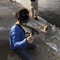 yasuさんの佐賀県伊万里市での釣果写真