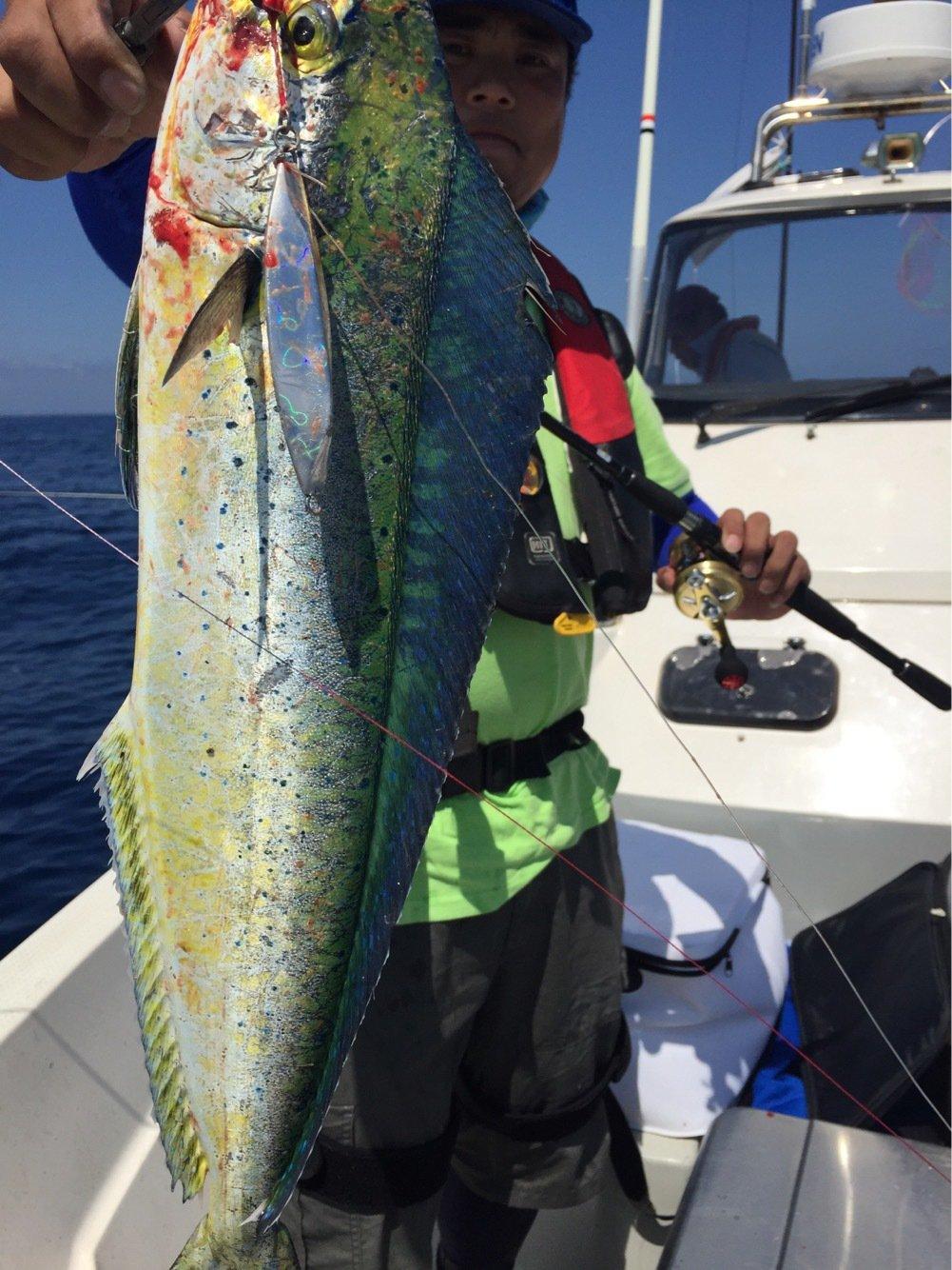 佐藤さんの投稿画像,写っている魚はシイラ