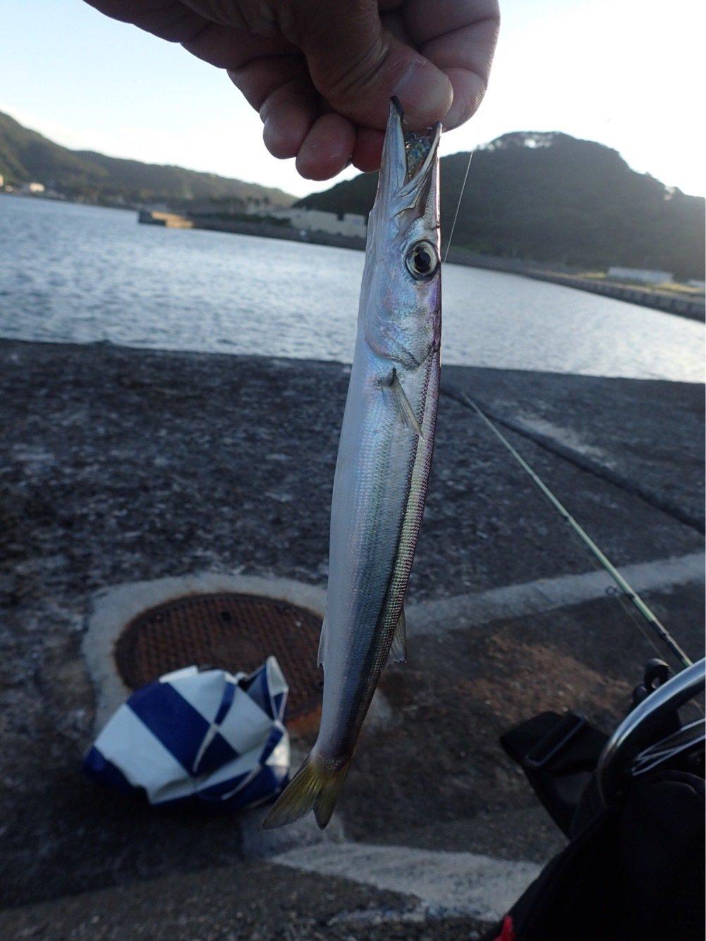 かつてのバスプロさんの投稿画像,写っている魚はカマス
