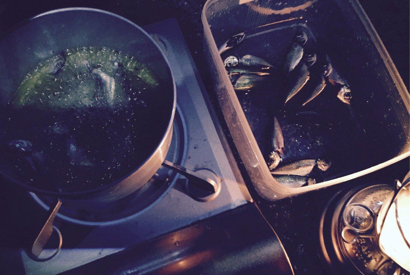 其処乃所 宜君さんの投稿画像,写っている魚はアジ