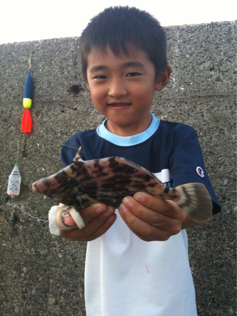 ohhataさんの投稿画像,写っている魚はカワハギ