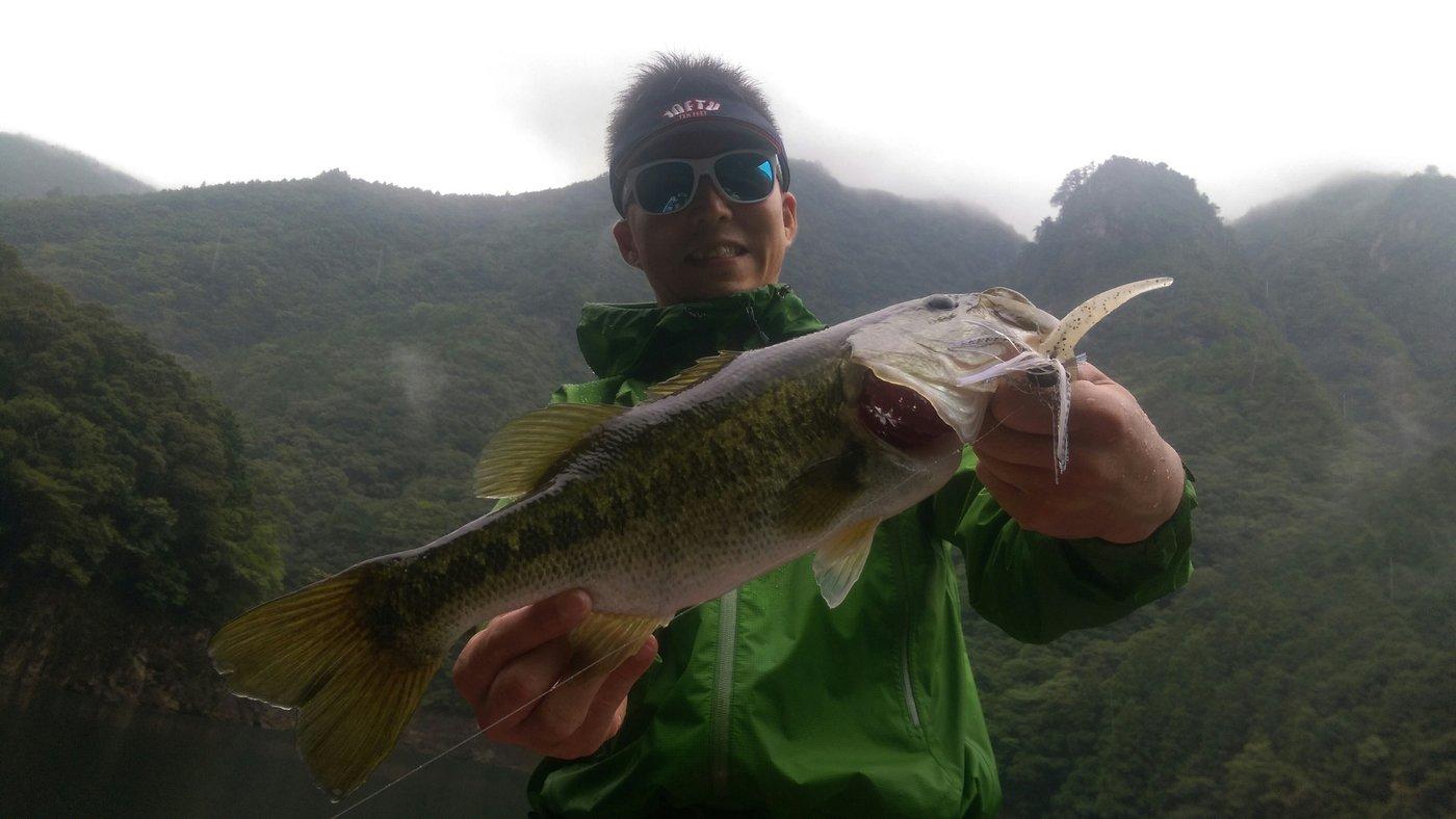 ichi0902さんの投稿画像,写っている魚はブラックバス