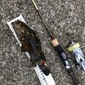 ussiさんの兵庫県尼崎市での釣果写真