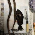 たっつぁんさんの兵庫県でのメバルの釣果写真
