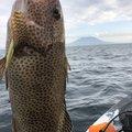 さとしさんの鹿児島県南九州市での釣果写真