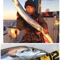 michiさんの兵庫県洲本市での釣果写真