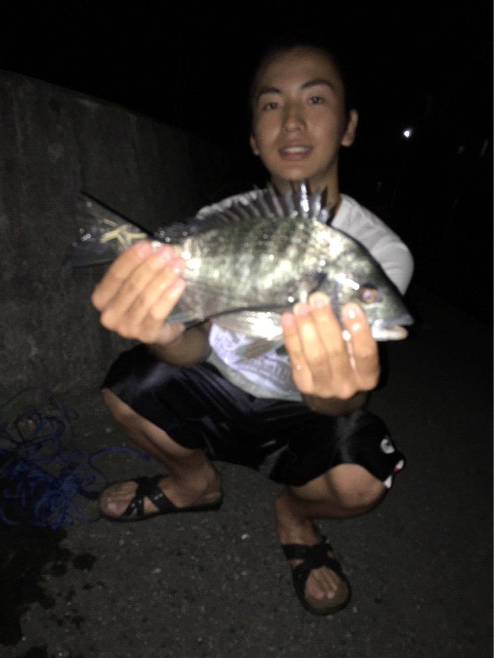 とはなりょうさんの投稿画像,写っている魚はクロダイ