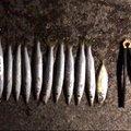 グッさんさんの千葉県鴨川市でのアジの釣果写真