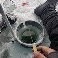 びるそんさんの群馬県での釣果写真