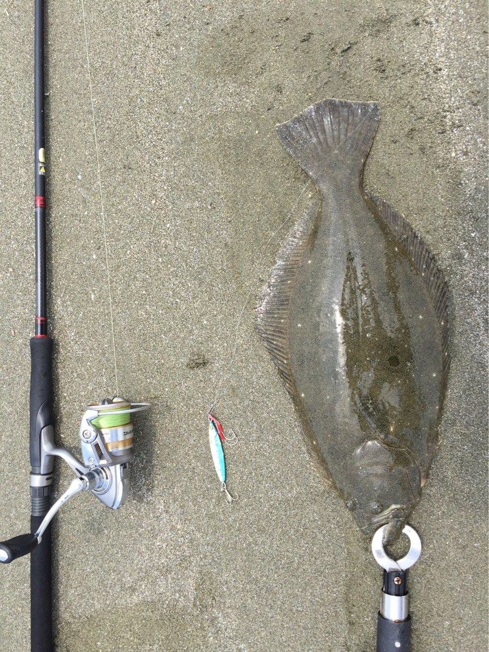 shunさんの投稿画像,写っている魚はヒラメ