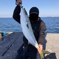 JIROさんの大分県大分市での釣果写真