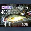 みつふじ だいきさんの滋賀県守山市での釣果写真