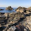 小瀬良克祐さんの長崎県西彼杵郡での釣果写真