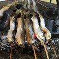 Anglerさんの栃木県那須烏山市での釣果写真