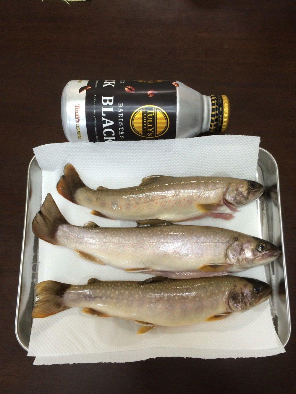 BeBeさんの投稿画像,写っている魚はイワナ