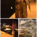 shinさんの広島県福山市での釣果写真