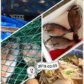 ぷりんさんの千葉県佐倉市での釣果写真