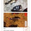 えびちゃん❗️さんの兵庫県でのメバルの釣果写真