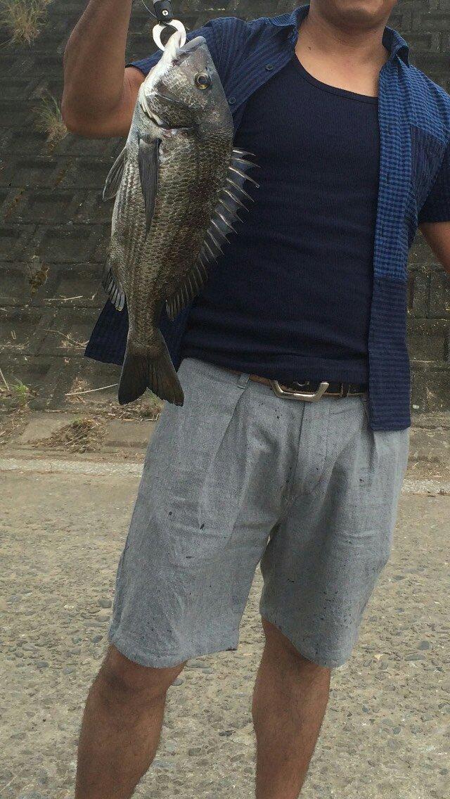 とらさんの投稿画像,写っている魚はクロダイ
