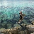 maha0910さんの沖縄県宮古島市での釣果写真
