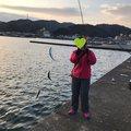 Yoshitaka Itohさんの大阪府泉南郡での釣果写真