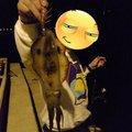 まーさんの長崎県南松浦郡での釣果写真