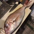 Kyoheiさんの東京都多摩市での釣果写真