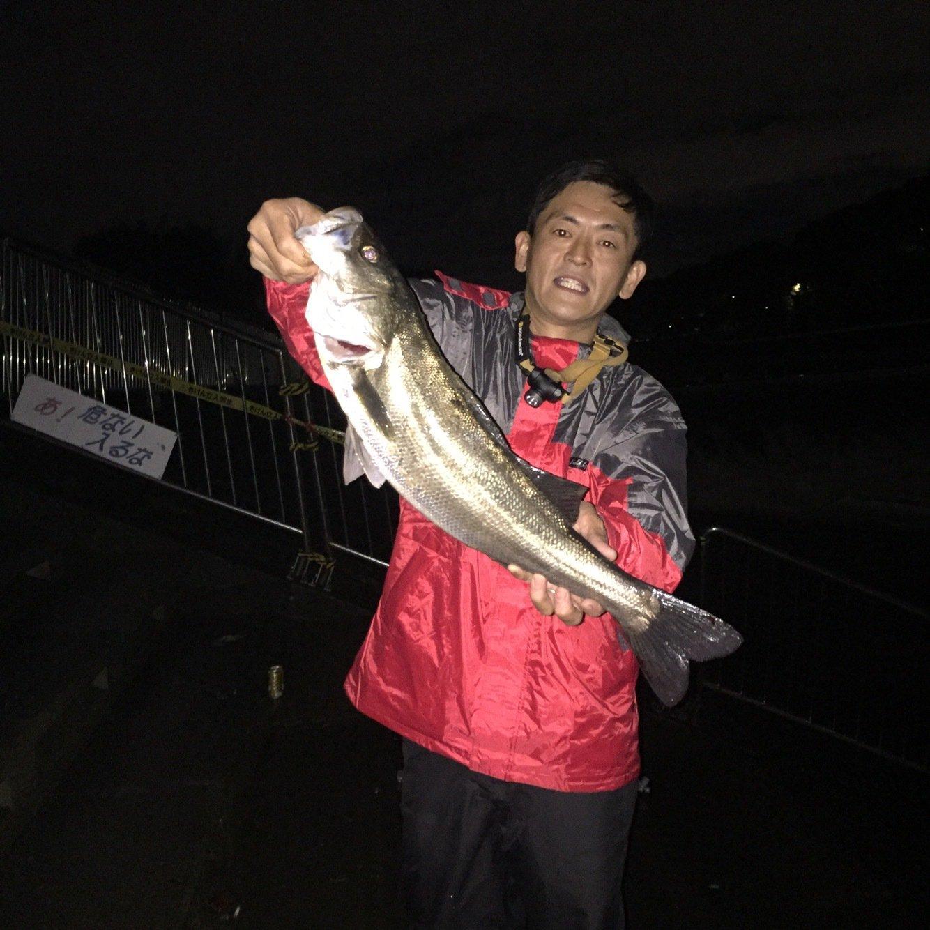 ユウさんの投稿画像,写っている魚はスズキ