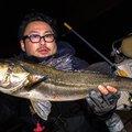 Yusuke さんの千葉県袖ケ浦市でのスズキの釣果写真