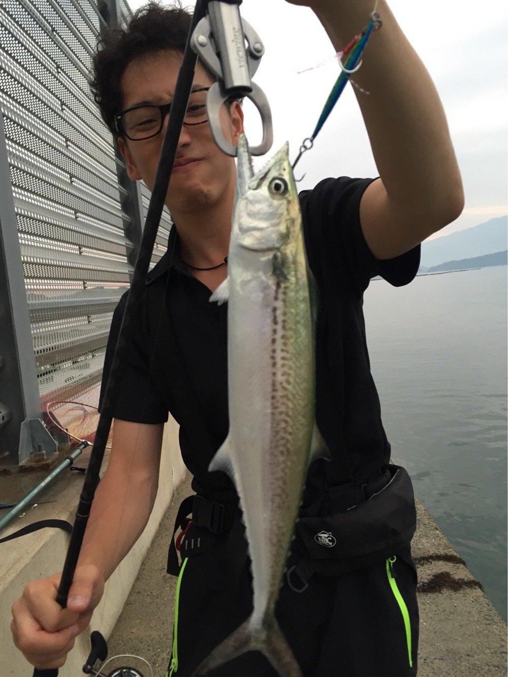 Harryさんの投稿画像,写っている魚はサワラ