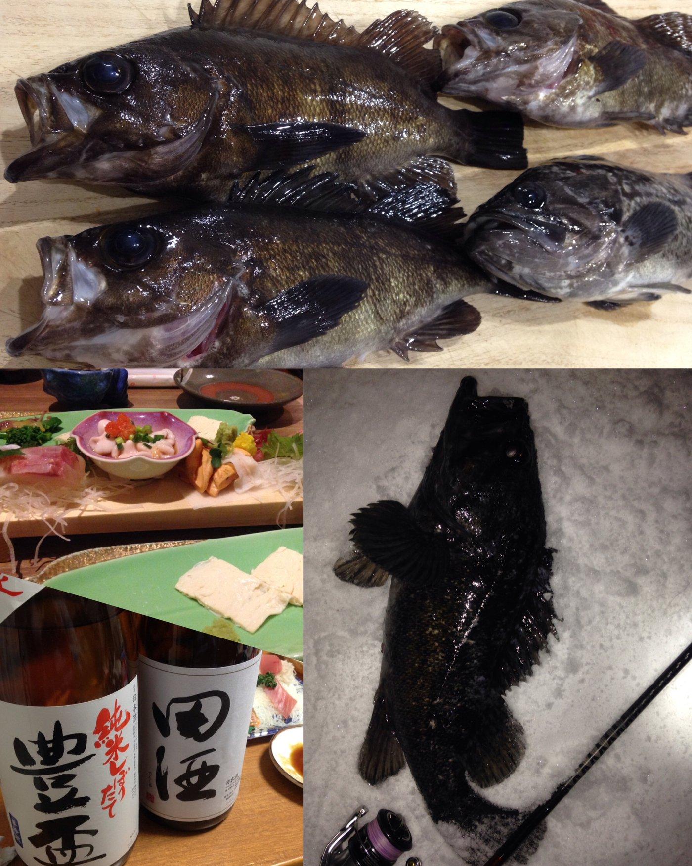 ビギにゃーさんの投稿画像,写っている魚はメバル
