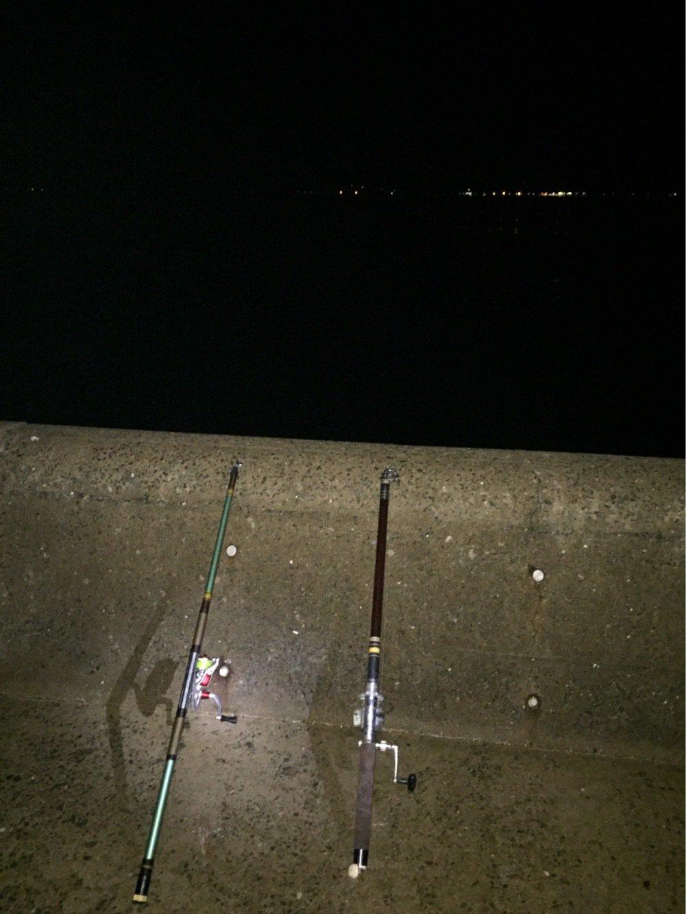 中村允紀さんの投稿画像,写っている魚は