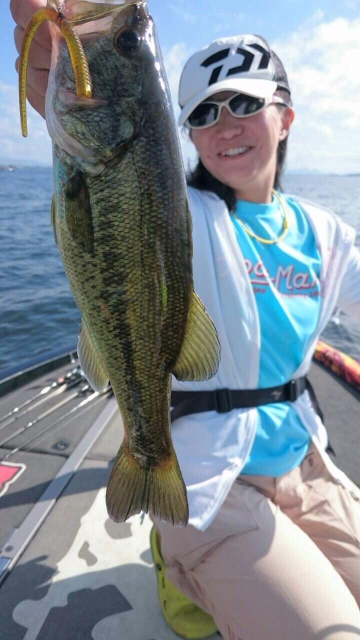 tenko☆moriさんの投稿画像,写っている魚はブラックバス