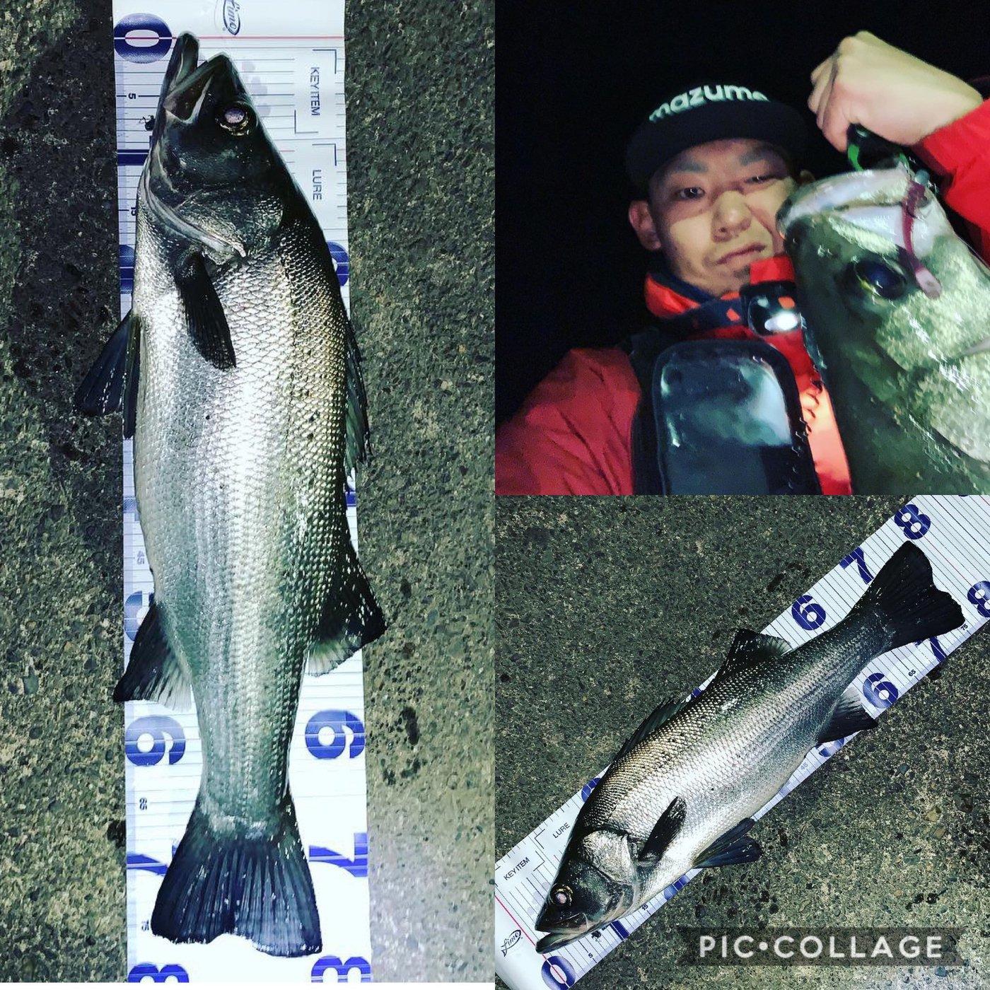 らいをん丸さんの投稿画像,写っている魚はヒラスズキ