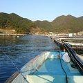 kenzyさんの三重県熊野市での釣果写真