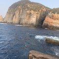サーーラさんの愛媛県での釣果写真