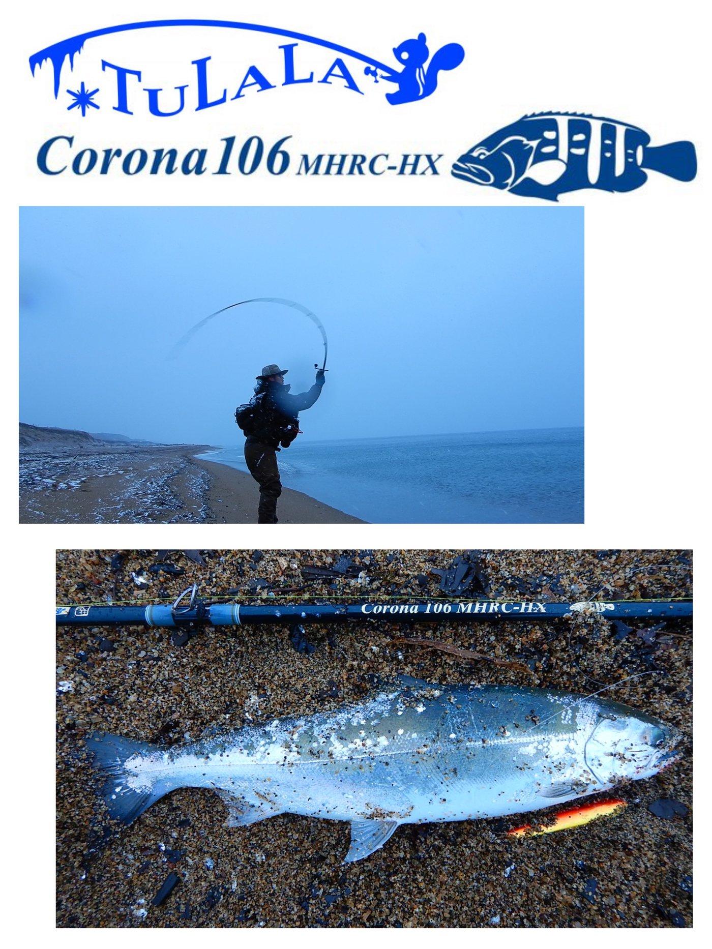 ヒ グさんの投稿画像,写っている魚はサクラマス