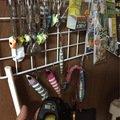 しょうとさんの大阪府和泉市でのタチウオの釣果写真