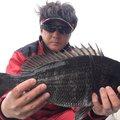 アップフィールド(幻影魚団)さんの福岡県北九州市での釣果写真