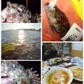 KRO さんの静岡県での釣果写真