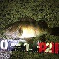 iwakoちゃんさんの広島県呉市での釣果写真