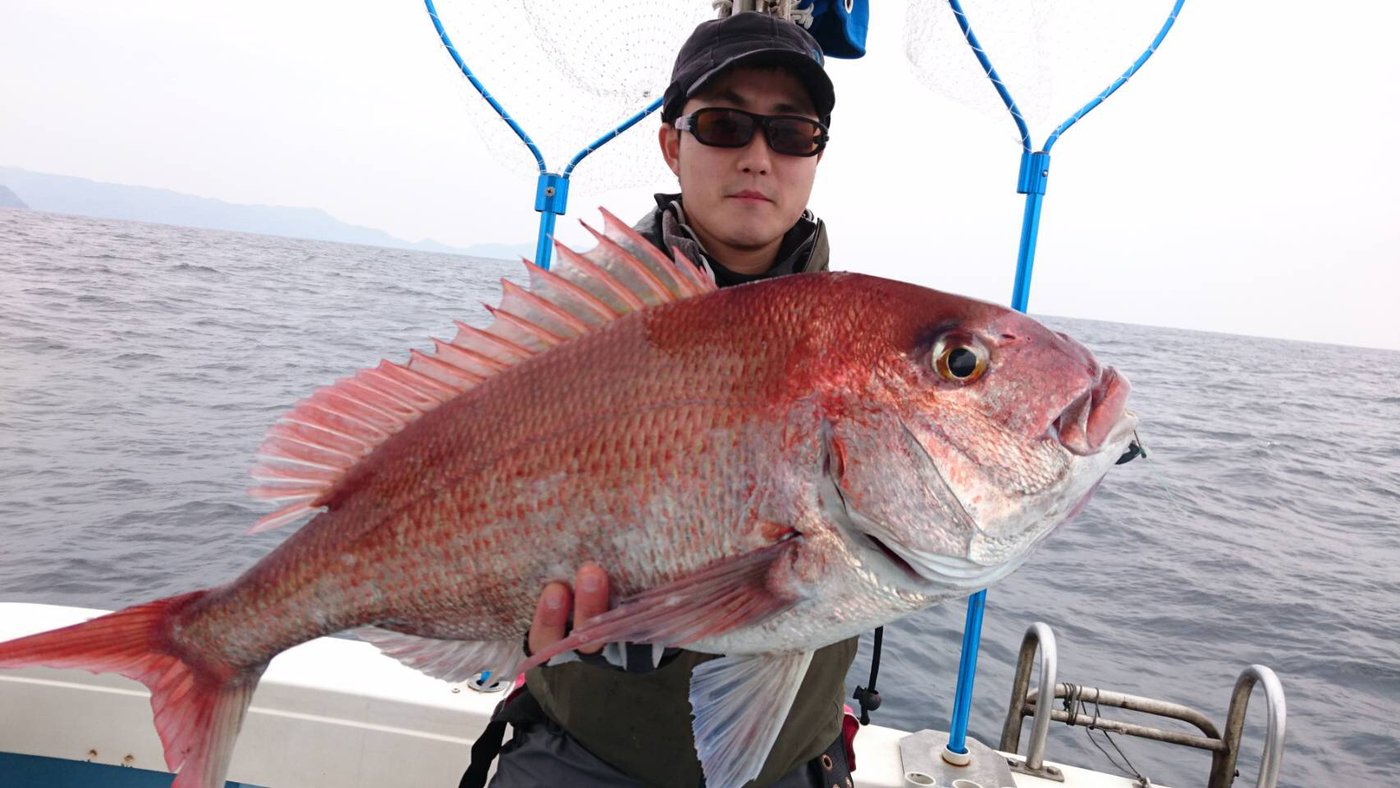 K I M Uさんの投稿画像,写っている魚はマダイ